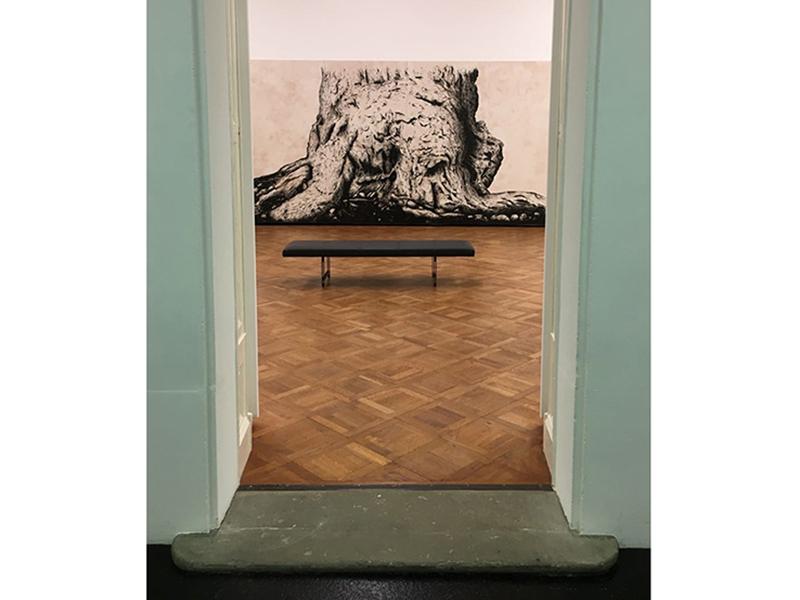 Installation view - Cedric Bregnard 'Immortel de Mélèze', 2017 - photo SJSchaffeld