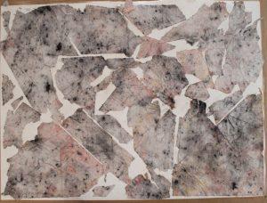 Stefan513593 - Assignment 1 - folding#2 - Fragments #2