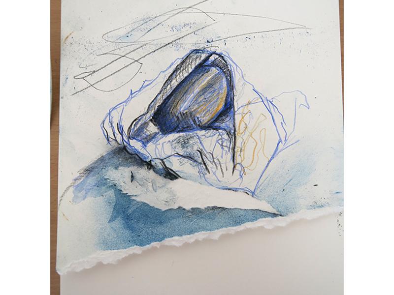 Drawing nested pebble (pencil, Conté crayon, dry pastel)